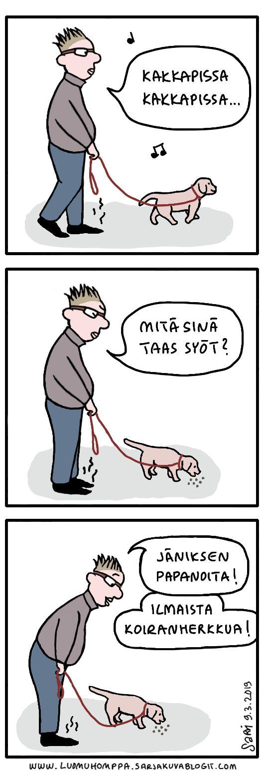 Koiranherkkua